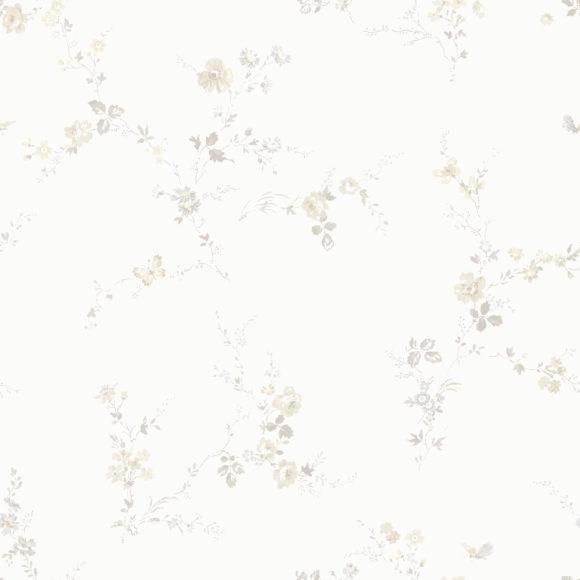 BorosanEU2017_33541__53x53cm_Straight