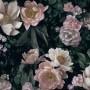 In_Bloom_7234_New_Dawn_Rose_53x76cm_halfdrop